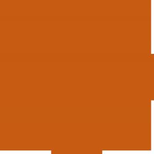 Large_university-of-texas_seal_rgb(199-91-18)