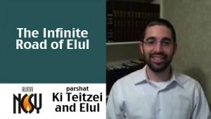Ki Teitzei Rabbi Arieh Freidner